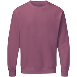 Textiel Heren Sweaters / Sweatshirts Sg SG20 Cassis