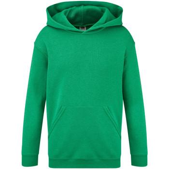 Textiel Kinderen Sweaters / Sweatshirts Fruit Of The Loom Hooded Heather Groen