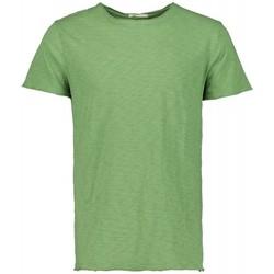 Textiel Heren T-shirts korte mouwen Scout M/m T-shirt (10184-groen-avocado) Groen