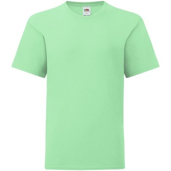 Textiel Kinderen T-shirts korte mouwen Fruit Of The Loom Iconic Neo Mint
