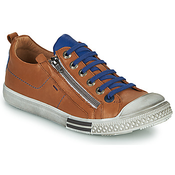 Schoenen Jongens Lage sneakers GBB STELLIO Brown