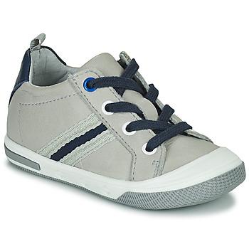 Schoenen Jongens Lage sneakers Little Mary LOGAN Grijs