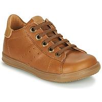 Schoenen Jongens Lage sneakers Little Mary DUSTIN Cognac