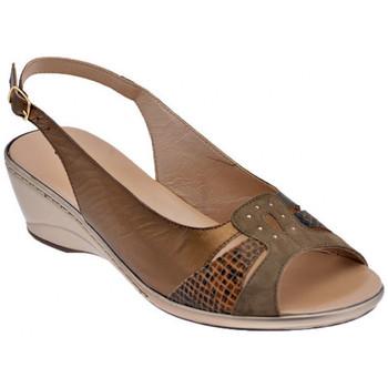 Schoenen Dames Sandalen / Open schoenen Confort  Brown
