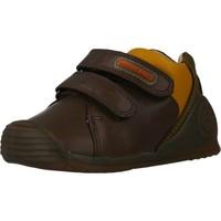 Schoenen Jongens Lage sneakers Biomecanics 191155 Bruin