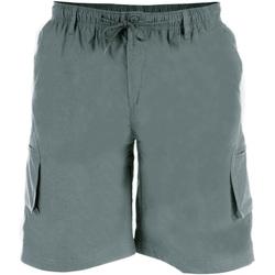 Textiel Heren Korte broeken / Bermuda's Duke  Grijs