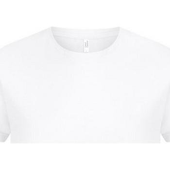 Textiel Heren T-shirts korte mouwen Casual Classics  Wit
