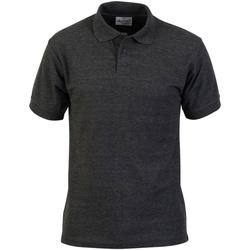 Textiel Heren Polo's korte mouwen Absolute Apparel  Houtskool
