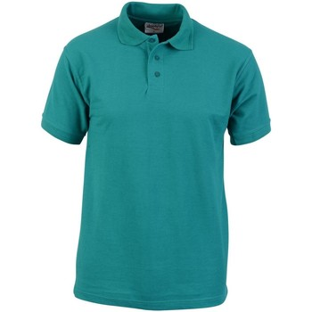 Textiel Heren Polo's korte mouwen Absolute Apparel  Smaragd