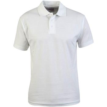 Textiel Heren Polo's korte mouwen Absolute Apparel  Wit