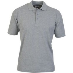 Textiel Heren Polo's korte mouwen Casual Classics  Sportgrijs
