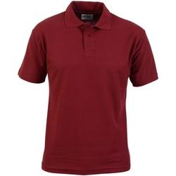 Textiel Heren Polo's korte mouwen Absolute Apparel  Bourgondië