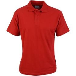 Textiel Heren Polo's korte mouwen Absolute Apparel  Rood