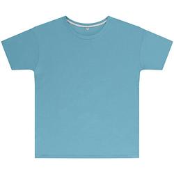 Textiel Kinderen T-shirts korte mouwen Sg SGTEEK Hemelsblauw