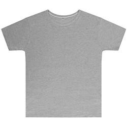 Textiel Kinderen T-shirts korte mouwen Sg SGTEEK Licht Oxford Grijs