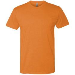 Textiel Heren T-shirts korte mouwen Next Level NX6210 Oranje