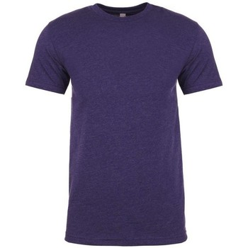 Textiel Heren T-shirts korte mouwen Next Level NX6210 Storm