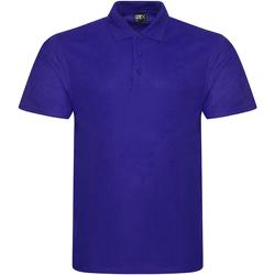 Textiel Heren Polo's korte mouwen Prortx RX101 Paars