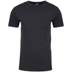 Textiel Heren T-shirts korte mouwen Next Level NX6210 Houtskool