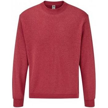 Textiel Heren Sweaters / Sweatshirts Fruit Of The Loom SS9 Heather Rood