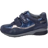 Schoenen Meisjes Sneakers Miss Sixty BK181 Bleu