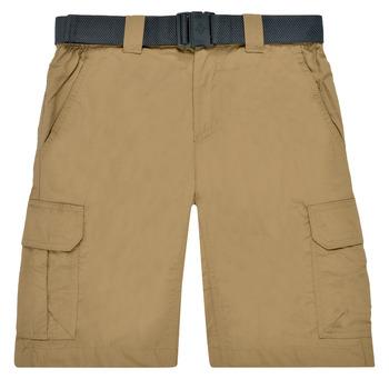 Textiel Heren Korte broeken / Bermuda's Columbia SILVER RIDGE II CARGO SHORT Beige
