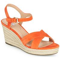Schoenen Dames Lage sneakers Geox D SOLEIL Orange
