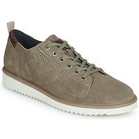Schoenen Heren Lage sneakers Geox U DAYAN Brown