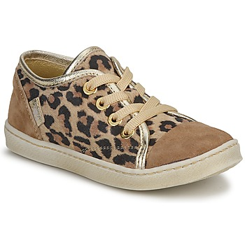 Schoenen Meisjes Lage sneakers Pinocchio  M. / Bruin