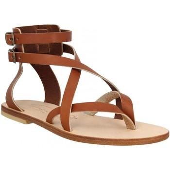Schoenen Dames Sandalen / Open schoenen Spartiates Phoceennes 130519 Brown