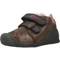 Schoenen Meisjes Hoge sneakers Biomecanics 201114 Bruin