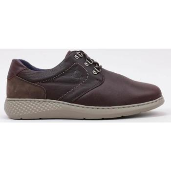 Schoenen Heren Derby Notton 81 Brown