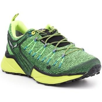 Schoenen Heren Lage sneakers Salewa MS Dropline Gtx Vert, Vert clair