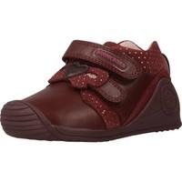 Schoenen Meisjes Laarzen Biomecanics 201109 Rood