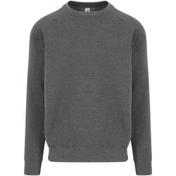Textiel Heren Sweaters / Sweatshirts Awdis JH130 Houtskool