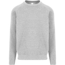 Textiel Heren Sweaters / Sweatshirts Awdis JH130 Heide Grijs