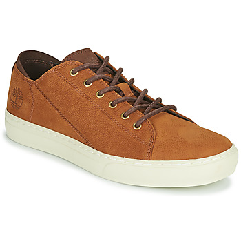 Schoenen Heren Lage sneakers Timberland ADV 2.0 CUPSOLE MODERN OX Cognac