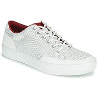 Schoenen Heren Lage sneakers Timberland ADV 2.0 GREEN KNIT OX Wit