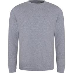 Textiel Heren Sweaters / Sweatshirts Ecologie EA030 Heide
