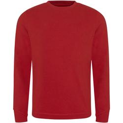 Textiel Heren Sweaters / Sweatshirts Ecologie EA030 Rood