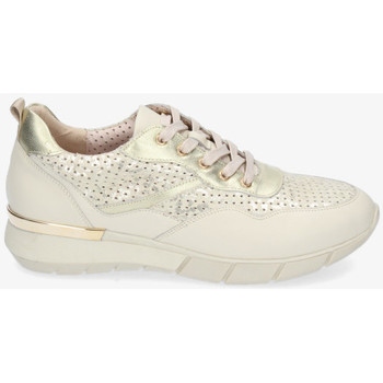 Schoenen Dames Lage sneakers Stephen Allen 10833-L7 Other