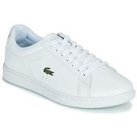 Schoenen Dames Lage sneakers Lacoste CARNABY EVO BL 21 1 SFA Wit