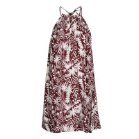 Textiel Dames Korte jurken Freeman T.Porter ROCCA MOROCCO Bordeaux