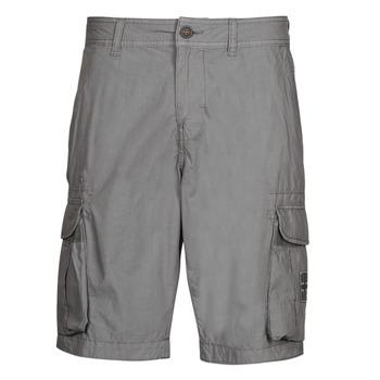 Textiel Heren Korte broeken / Bermuda's Napapijri NORI Grijs