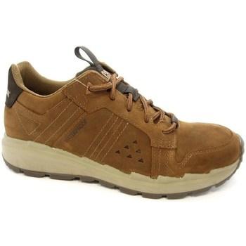 Schoenen Heren Lage sneakers Caterpillar Stratify LO WP Marron