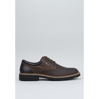 Schoenen Heren Derby Imac  Brown