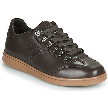 Schoenen Heren Lage sneakers Geox U WARRENS Brown