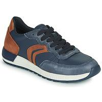 Schoenen Jongens Lage sneakers Geox J ALBEN BOY Blauw