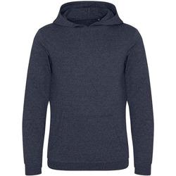 Textiel Heren Sweaters / Sweatshirts Ecologie EA040 Houtskool