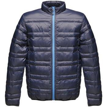 Textiel Heren Dons gevoerde jassen Regatta RG119 Marine / Frans Blauw